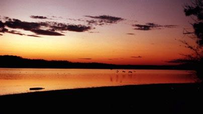 sunsetatswiftcreek.jpg